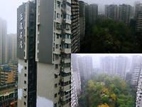出租蓝鹰美庐1室2厅1卫68平米1500元/月住宅