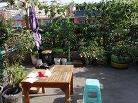正读绿盛小学 买一层送一层 精装四室 带40平花园 可露天BBQ