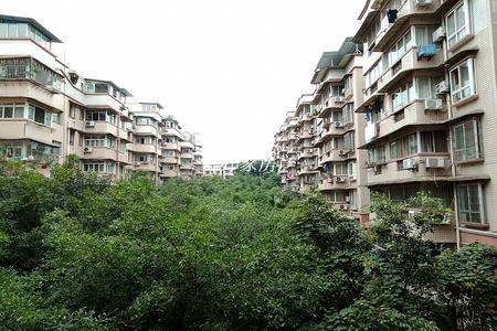 投资的好房子 价格便宜汇东公园 理工学院沃尔玛旁明珠小区