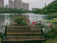 出租远达.龙湖尚城110平米2800元/月商铺