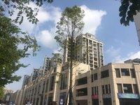 中介勿扰,出售 汇东 南湖逸都2期3室2厅2卫109平米84万住宅