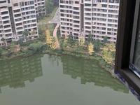 泰丰国际城清水湖景房6000元每平米急售