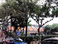 出售盈佳大厦27.99平米65.8万商铺