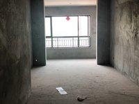 南湖领御小高层洋房两室两厅!临泰丰华商万达龙湖.....找我免费看房
