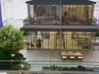独栋别墅 买两层送一层冲总面积高达320