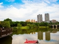 鸿山·金域龙湖实景图