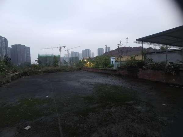 南湖区域唯一一套小户型,大花园房,前临万达,后面绿盛名校,价格便宜,看房方便