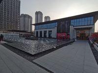首付12万买东部新城楼盘,未来发展潜力无限