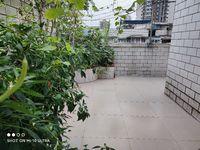 万达附近 楼顶自建带花园单间 家具家电齐全 可上网