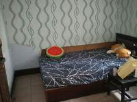 出租三台寺2室1厅1卫58平米500元/月住宅