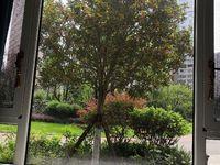 出售东城国际3室2厅1卫85平米45.8万住宅