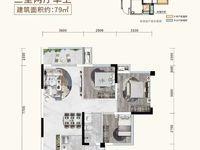 出售邦泰 天著3室2厅1卫79平米60万住宅