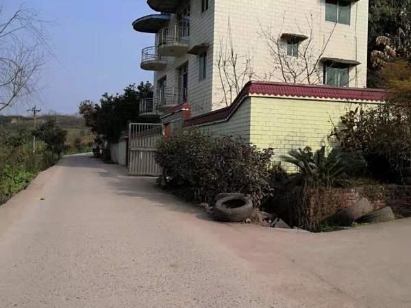 农村自建小洋房,楼下楼上都有花园,有停车位,有很宽的菜园,可租可售