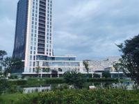 南湖邦泰旁边 标准两室 总价38万新房出售 还可以领政府补贴200一个平方