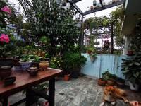 出售绿盛家园4室3厅2卫209平米楼顶花园76万住宅